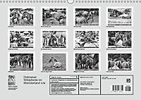 Dülmener Wildpferde im Münsterland in schwarz und weiß (Wandkalender 2019 DIN A3 quer) - Produktdetailbild 12