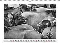 Dülmener Wildpferde im Münsterland in schwarz und weiss (Wandkalender 2019 DIN A3 quer) - Produktdetailbild 2