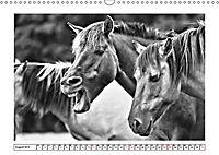 Dülmener Wildpferde im Münsterland in schwarz und weiss (Wandkalender 2019 DIN A3 quer) - Produktdetailbild 8
