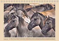 Dülmener Wildpferde im Münsterland (Tischkalender 2019 DIN A5 quer) - Produktdetailbild 1