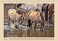 Dülmener Wildpferde im Münsterland (Tischkalender 2019 DIN A5 quer) - Produktdetailbild 3