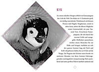 DuMont True Tales Der König der Pinguine - Produktdetailbild 1