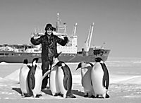 DuMont True Tales Der König der Pinguine - Produktdetailbild 3