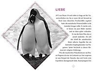 DuMont True Tales Der König der Pinguine - Produktdetailbild 4