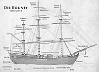 DuMont True Tales Der Untergang der Bounty - Produktdetailbild 1