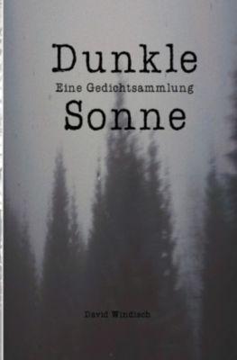 Dunkle Sonne - David Windisch |