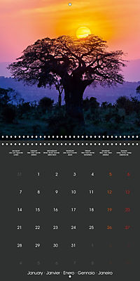 East African Nature (Wall Calendar 2019 300 × 300 mm Square) - Produktdetailbild 1