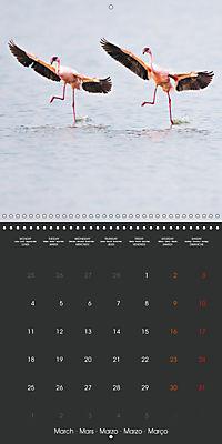 East African Nature (Wall Calendar 2019 300 × 300 mm Square) - Produktdetailbild 3