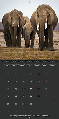 East African Nature (Wall Calendar 2019 300 × 300 mm Square) - Produktdetailbild 2