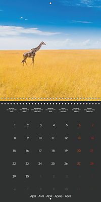 East African Nature (Wall Calendar 2019 300 × 300 mm Square) - Produktdetailbild 4