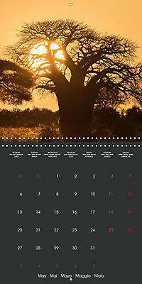 East African Nature (Wall Calendar 2019 300 × 300 mm Square) - Produktdetailbild 5