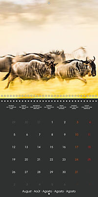 East African Nature (Wall Calendar 2019 300 × 300 mm Square) - Produktdetailbild 8
