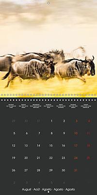 East African Nature (Wall Calendar 2019 300 × 300 mm Square) - Produktdetailbild 8