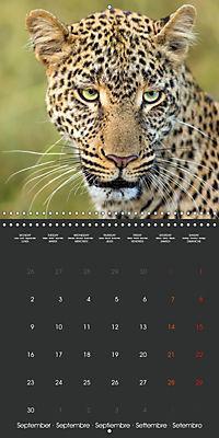 East African Nature (Wall Calendar 2019 300 × 300 mm Square) - Produktdetailbild 9