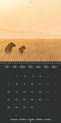 East African Nature (Wall Calendar 2019 300 × 300 mm Square) - Produktdetailbild 10