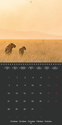East African Nature (Wall Calendar 2019 300 × 300 mm Square) - Produktdetailbild 10