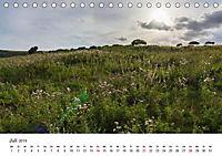 Eastbourne an Englands Südküste (Tischkalender 2019 DIN A5 quer) - Produktdetailbild 7