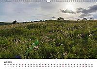 Eastbourne an Englands Südküste (Wandkalender 2019 DIN A3 quer) - Produktdetailbild 7