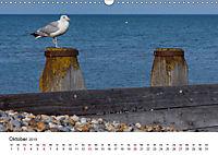 Eastbourne an Englands Südküste (Wandkalender 2019 DIN A3 quer) - Produktdetailbild 10