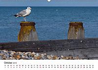 Eastbourne an Englands Südküste (Wandkalender 2019 DIN A2 quer) - Produktdetailbild 10