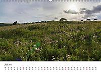 Eastbourne an Englands Südküste (Wandkalender 2019 DIN A2 quer) - Produktdetailbild 7