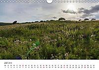 Eastbourne an Englands Südküste (Wandkalender 2019 DIN A4 quer) - Produktdetailbild 7