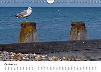 Eastbourne an Englands Südküste (Wandkalender 2019 DIN A4 quer) - Produktdetailbild 10