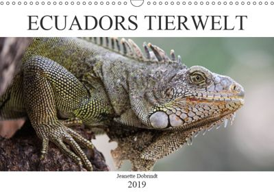 Ecuadors Tierwelt (Wandkalender 2019 DIN A3 quer), Jeanette Dobrindt