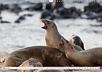 Ecuadors Tierwelt (Wandkalender 2019 DIN A3 quer) - Produktdetailbild 3