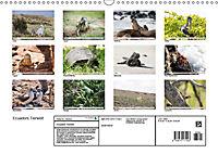 Ecuadors Tierwelt (Wandkalender 2019 DIN A3 quer) - Produktdetailbild 13