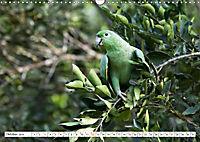 Ecuadors Tierwelt (Wandkalender 2019 DIN A3 quer) - Produktdetailbild 10