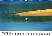 Edersee - Landschaftsformen bei Niedrigwasser (Wandkalender 2019 DIN A3 quer) - Produktdetailbild 8