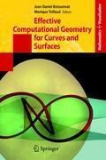 Effective Computational Geometry for Curves and Surfaces