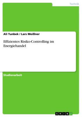 Effizientes Risiko-Controlling im Energiehandel, Ali Tunbek, Lars Meißner