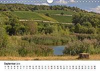 Eibelstadt am Main - Schönes Ambiente und guter Wein (Wandkalender 2019 DIN A4 quer) - Produktdetailbild 5