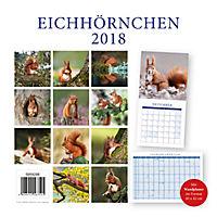 Eichhörnchen Broschurkal. 2018 - Produktdetailbild 15