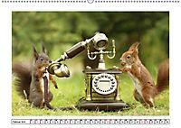 Eichhörnchen - Hast du Nüsschen mache ich Männchen (Wandkalender 2019 DIN A2 quer) - Produktdetailbild 2