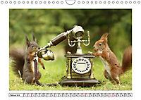 Eichhörnchen - Hast du Nüsschen mache ich Männchen (Wandkalender 2019 DIN A4 quer) - Produktdetailbild 2