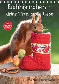 Eichhörnchen - kleine Tiere, große Liebe (Tischkalender 2019 DIN A5 hoch), Heike Adam