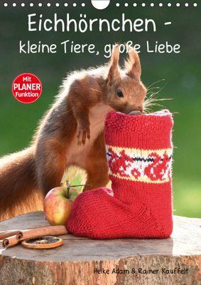 Eichhörnchen - kleine Tiere, große Liebe (Wandkalender 2019 DIN A4 hoch), Heike Adam