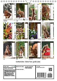Eichhörnchen - kleine Tiere, große Liebe (Wandkalender 2019 DIN A4 hoch) - Produktdetailbild 13