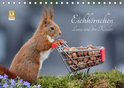 Eichhörnchen Luna und ihre Kinder (Tischkalender 2019 DIN A5 quer), Tine Meier
