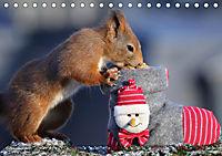 Eichhörnchen Luna und ihre Kinder (Tischkalender 2019 DIN A5 quer) - Produktdetailbild 12