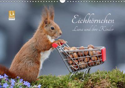 Eichhörnchen Luna und ihre Kinder (Wandkalender 2019 DIN A3 quer), Tine Meier