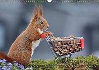 Eichhörnchen Luna und ihre Kinder (Wandkalender 2019 DIN A3 quer) - Produktdetailbild 2