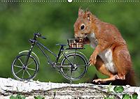 Eichhörnchen Luna und ihre Kinder (Wandkalender 2019 DIN A2 quer) - Produktdetailbild 6