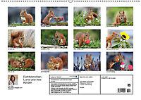 Eichhörnchen Luna und ihre Kinder (Wandkalender 2019 DIN A2 quer) - Produktdetailbild 13
