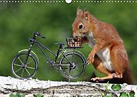 Eichhörnchen Luna und ihre Kinder (Wandkalender 2019 DIN A3 quer) - Produktdetailbild 6