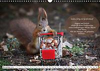Eichhörnchen - Lustige Kurzgeschichten mit den quirligen Wildtieren (Wandkalender 2019 DIN A3 quer) - Produktdetailbild 11