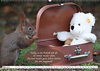 Eichhörnchen - Lustige Kurzgeschichten mit den quirligen Wildtieren (Wandkalender 2019 DIN A2 quer) - Produktdetailbild 3